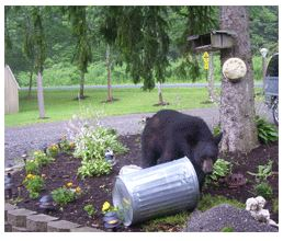 Bear Garbage Can